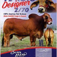 Padre VL Rojo Designer 2/70